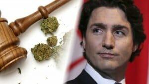 Canada makes history by mandating legalization of marijuana!