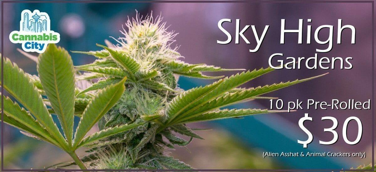 Sky High Pre Rolls